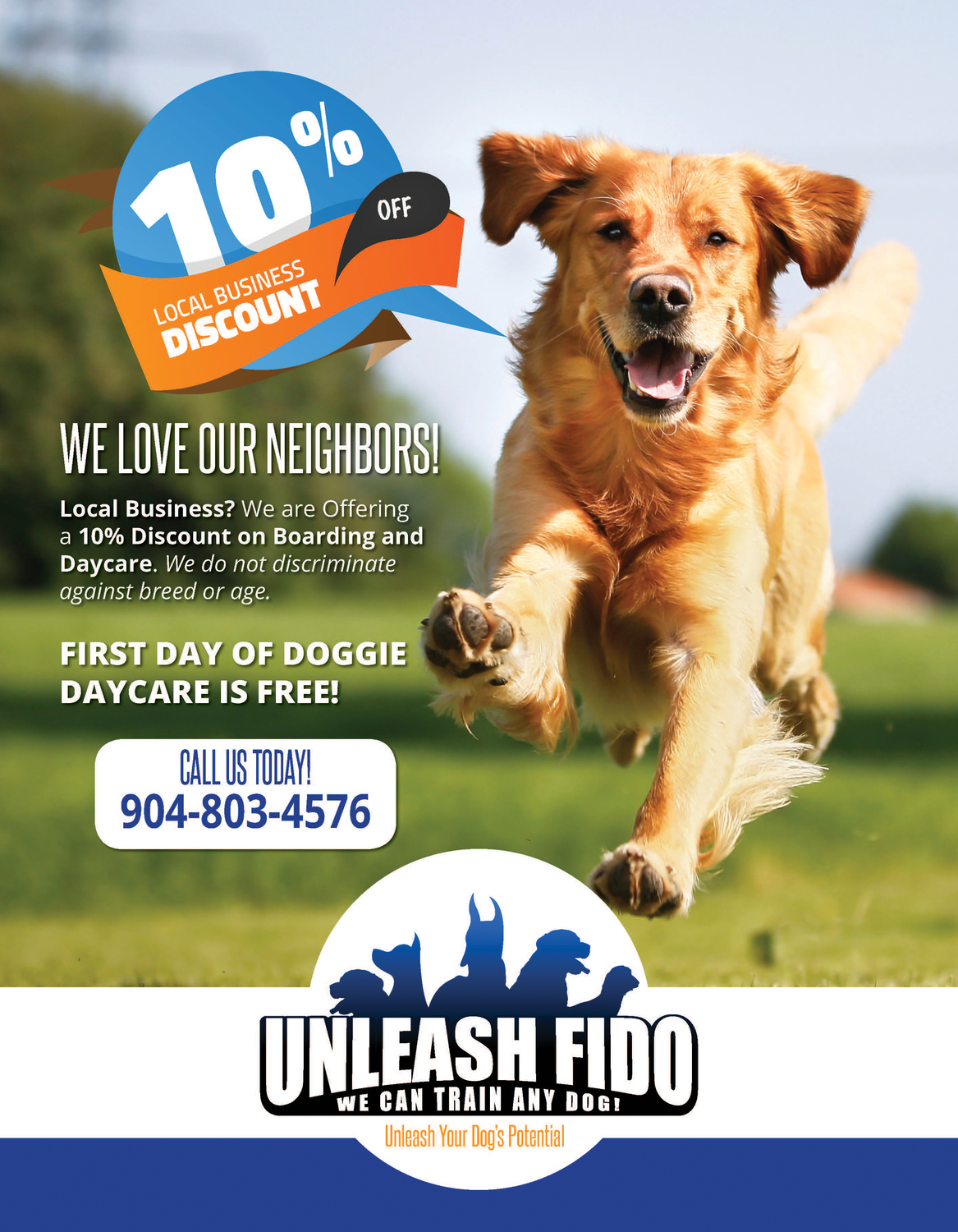 Unleash Fido Flyer & Trifold Brochure
